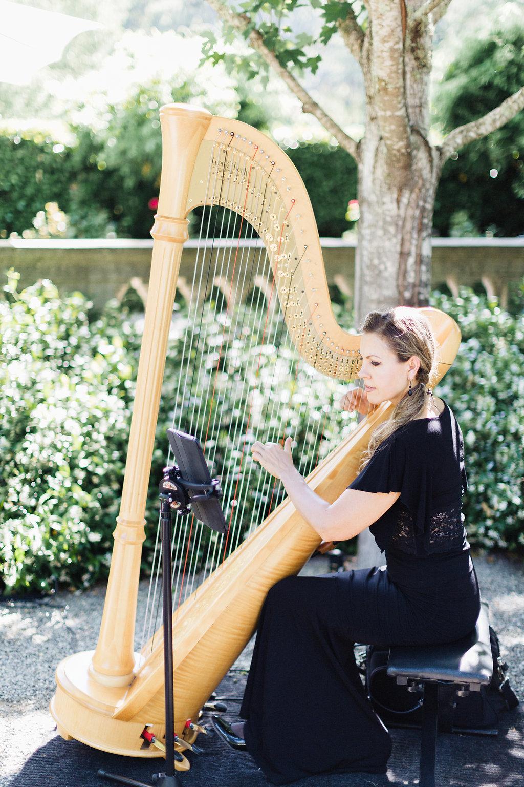 Beaulieu Garden, Napa Wedding, Krista Strader harpist